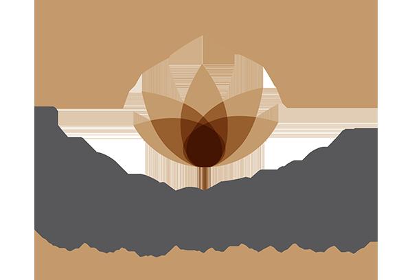 Train Your Mind Teacher Training 40h