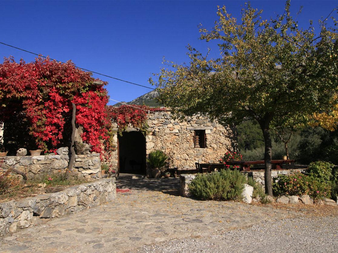 ALONIA-GUEST-HOUSE-AGIOS-IOANNIS-SFAKIA-CRETE-1116×837